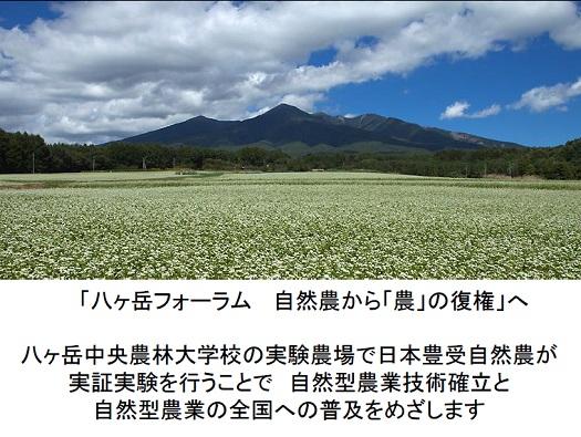 八ヶ岳フォーラムPPT