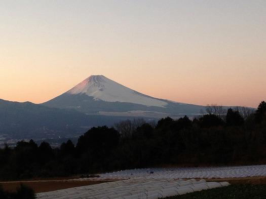 本日の富士山⑤B面より