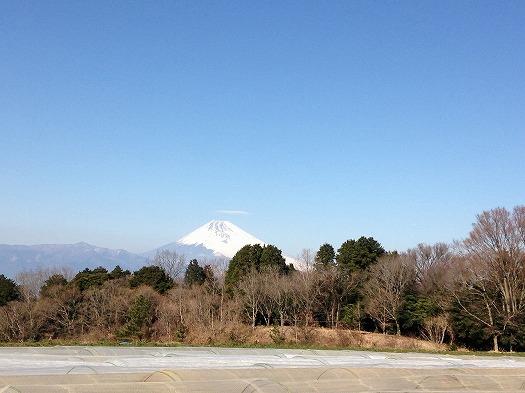 本日の富士山0128
