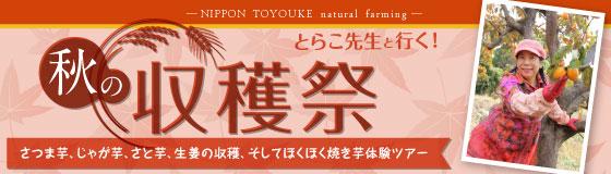 2016toyouke_autumn_01