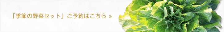 「季節の野菜セット」ご予約はこちら