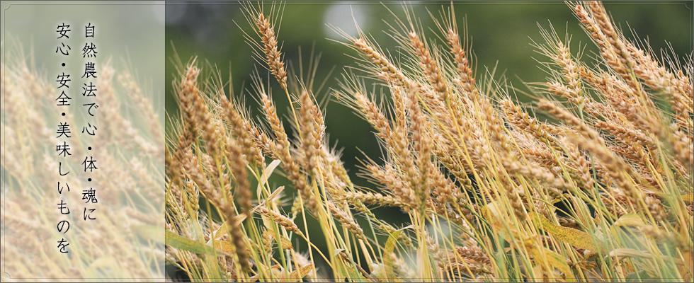 日本豊受自然農株式会社