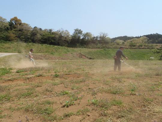 C面草刈り