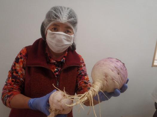 由井会長と巨大な野沢菜の蕪