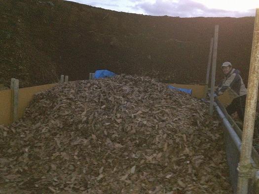 落ち葉をB面堆肥所に下したところ