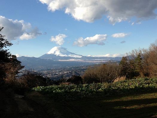 本日の富士山①