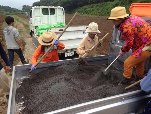 新圃場に堆肥を入れていく