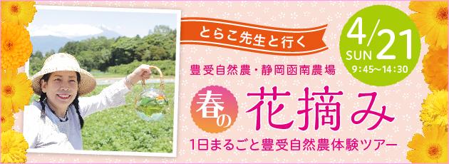 bn_2019toyouke_kannami_630x230